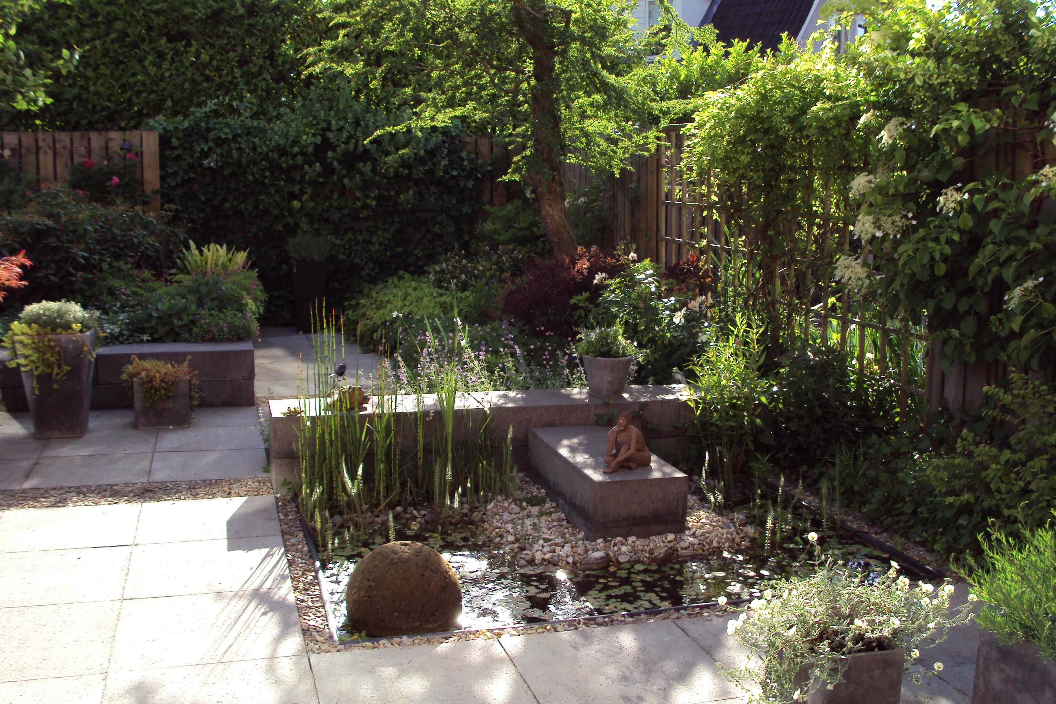 Vijver in kleine tuin jpg anneke van megen for Kleine vijver tuin