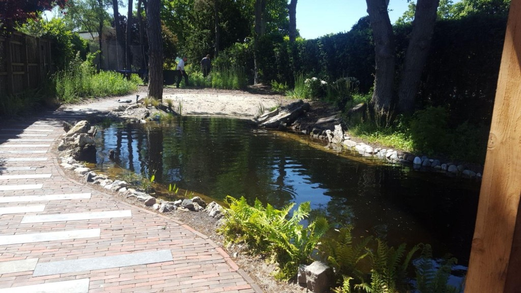 Natuurvijver en huisje in Soesterberg 1