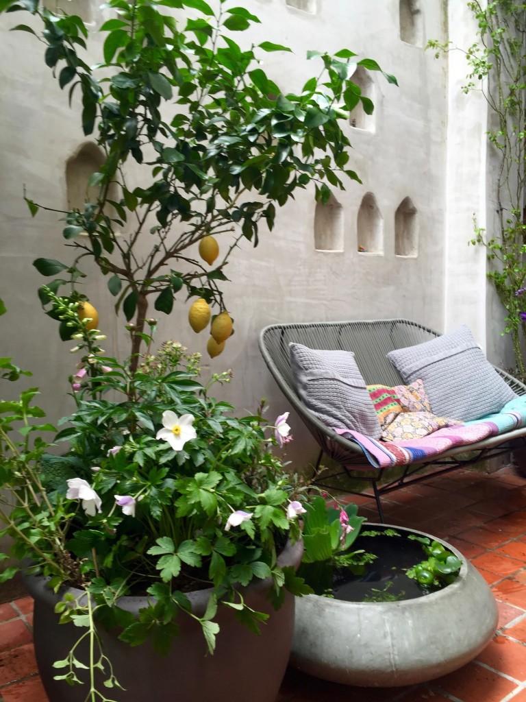 kleine patio 1